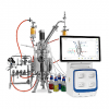 Small scale, product development SIP fermentor bioreactor system
